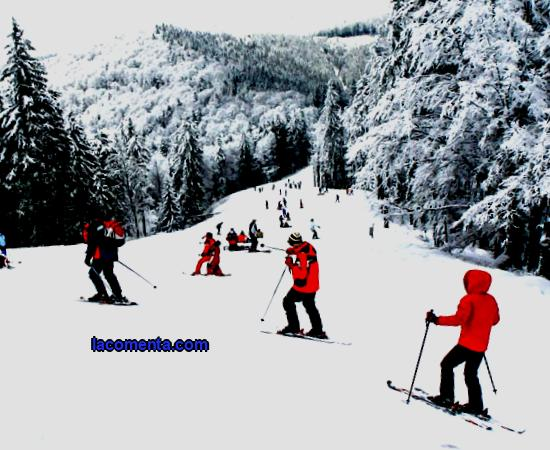 Both in winter and in summer: why go to Sinaia Sinaia (Romania) is a famous ski resort in the Prahova river valley. A small cozy town surrounded by coniferous forests, sunny alpine