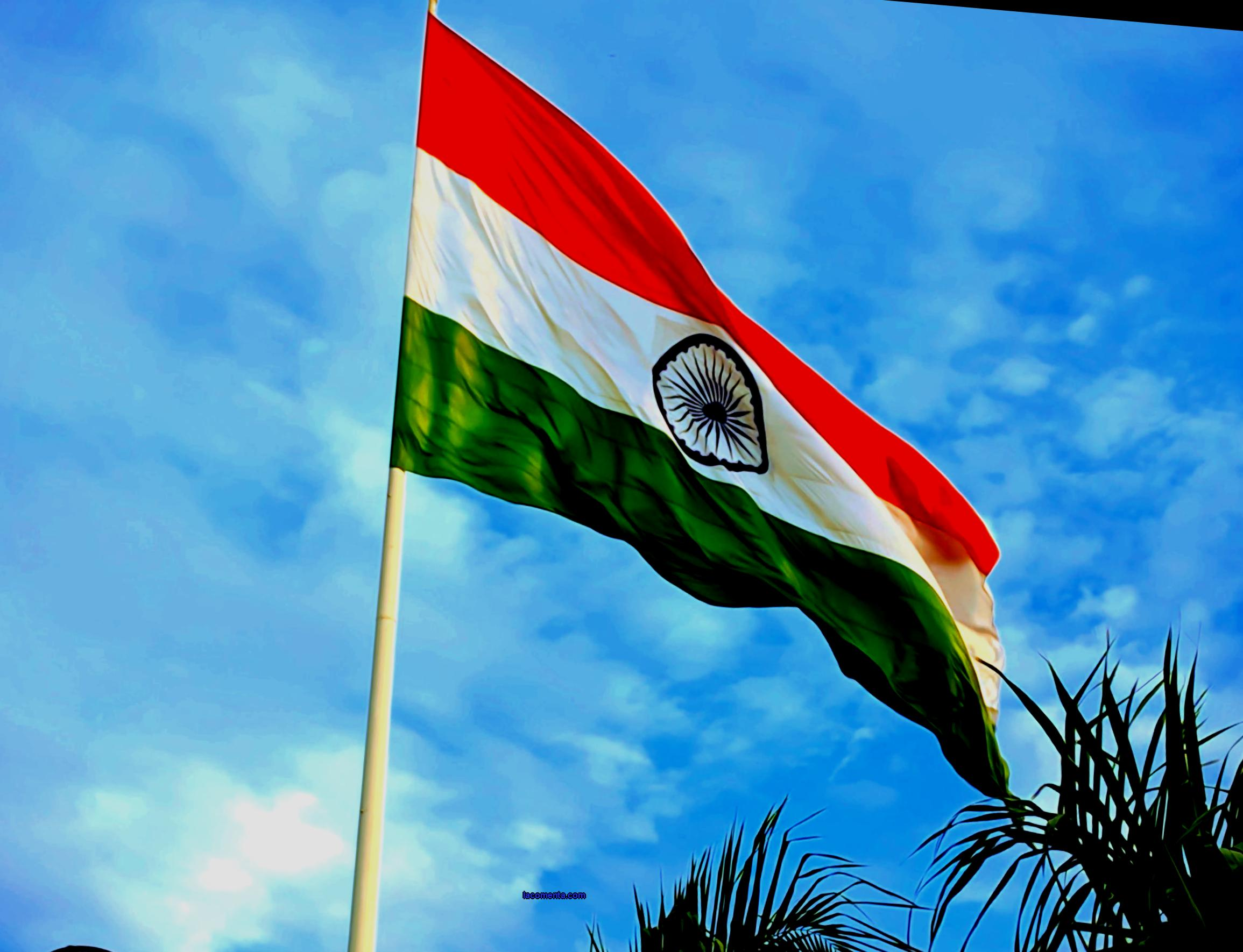 India spoke about the conditions for the entry of foreign tourists