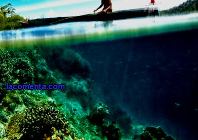 Ecological tourism Indonesia