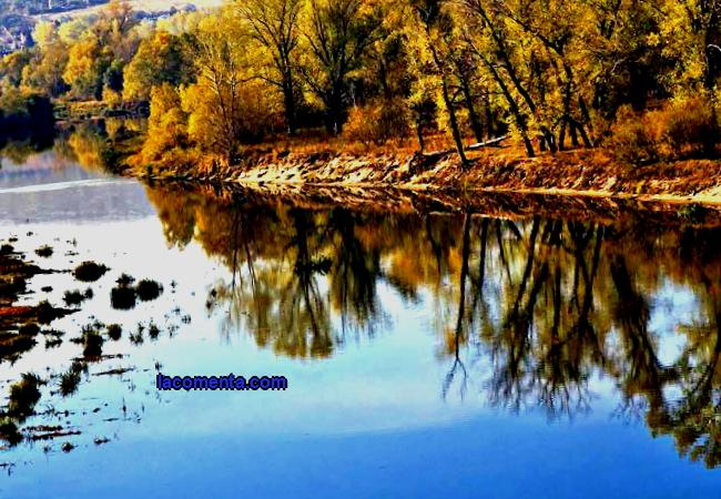 Rivers of the Samara Region Hydrology of the Samara Region The Samara Region is located on the territory of the Russian Federation and belongs to the Volga District. It borders on Tatarstan and