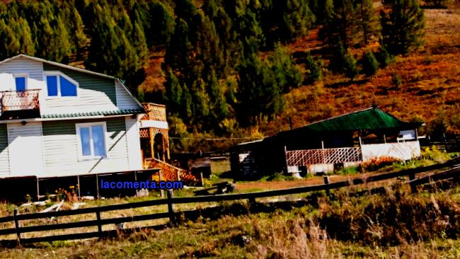 In 2009, the owners of 78 accommodation facilities were engaged in rural tourism in the Altai Territory. This year (successful for Altai tourism in general) there are already 175 of them. This is the official statistics. However, according to market participants, there are actually many more so-called