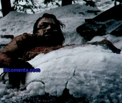At Any Cost: Top 10 Extreme Survival Films