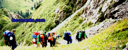 Mountain tourism, features and organization