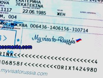 Purpose of travel to Russia