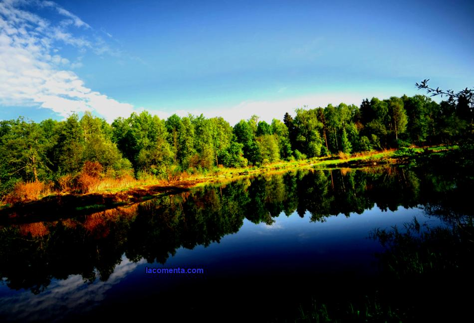 Ecotrails of the Moscow Region