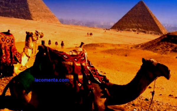 Resorts of Egypt: description and features of rest