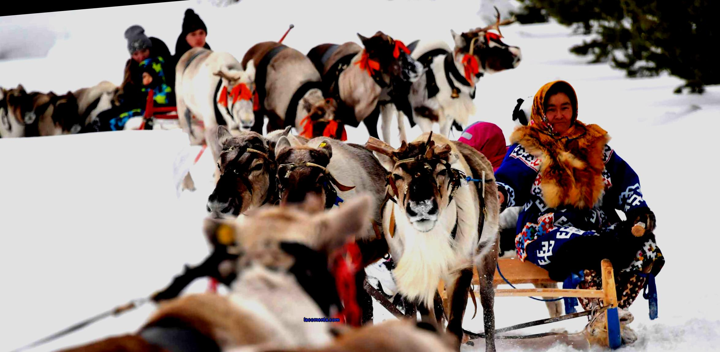 Rest in Khanty-Mansiysk: Trips to the indigenous northerners and the fabulous New Year