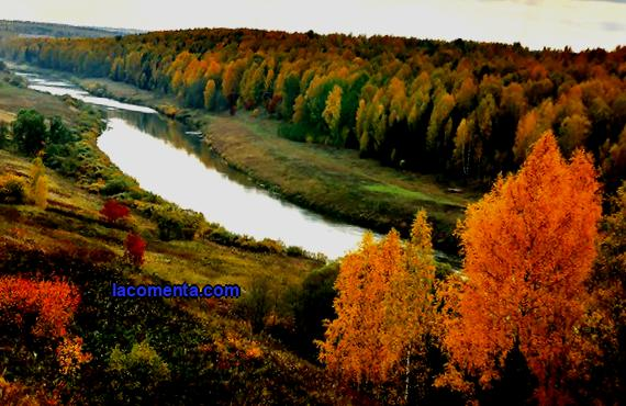 The nature of the Kirov region