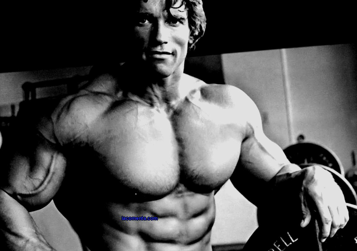 Seluyanov's system: how a Soviet professor proved that bodybuilders swing incorrectly