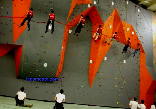 Rock climbing: description, types, history, benefits and harms, photos, videos