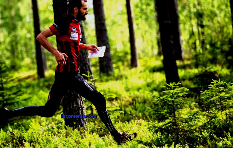 Orienteering: history, types, signs on the map, disciplines