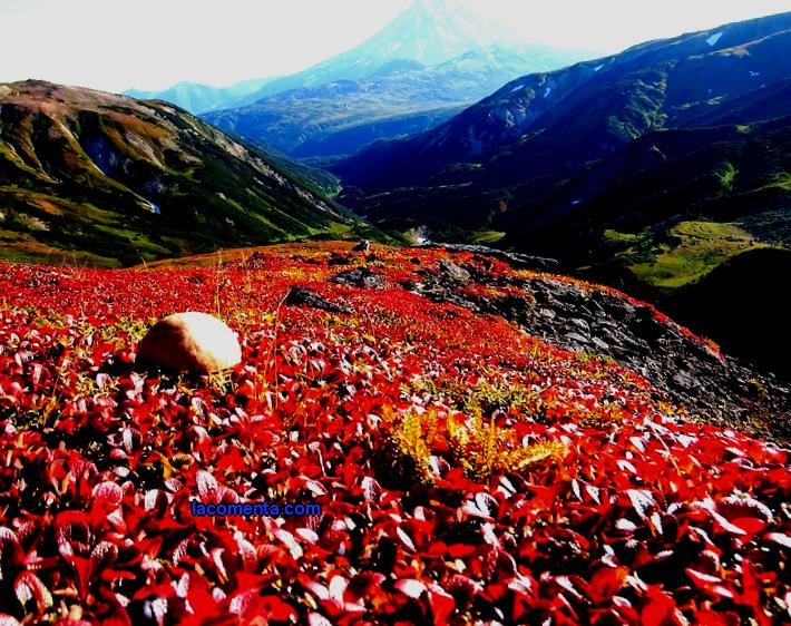 How much does it cost to visit Kamchatka in autumn
