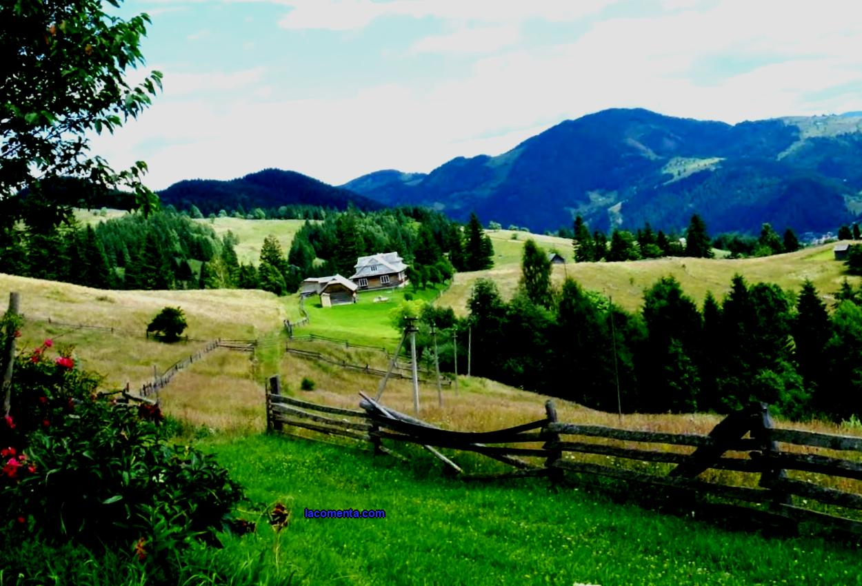 Horseback riding in the Carpathians
