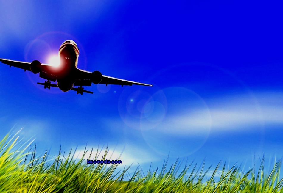 Business on the Far Eastern hectare in the form of a travel agency - we will analyze the features, cost, difficulties and prospects of the tourism business